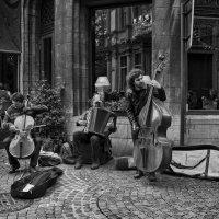 Играй, музыкант! :: Лара Leila