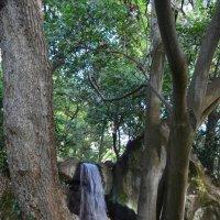 Водопад в Воронцовском парке :: Marina Timoveewa