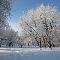 мороз :: Валерий Валвиз
