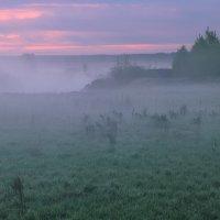 Домик с окнами в туман... :: Roman Lunin