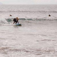 Юный серфингист :: Александр Манько