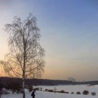 """Img_2586 - Заметки """"юного"""" натуралиста :: Андрей Лукьянов"""