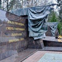 Поздравляю с Днем Защитника Отечества! :: Виталий Половинко