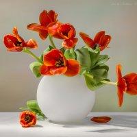 С красными тюльпанами в белой вазе :: Светлана Л.