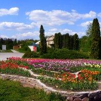 парк Александрия :: наташа
