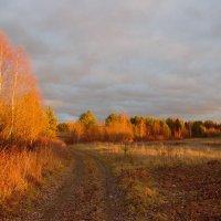 Осень, рыжая подружка. :: mike95