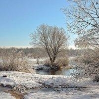 Зимой. :: Валера39 Василевский.