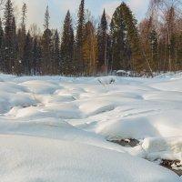 Последние дни зимы.. :: Сергей Винтовкин