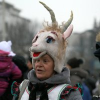 идет коза рогатая :: Олег Лукьянов