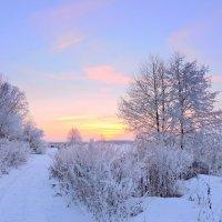 Зимний вечер. :: Hаталья Беклова