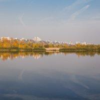 В Воронеже осень :: Алексей Шаповалов Стерх