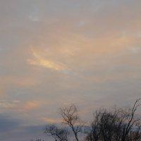 Багряный рассвет... :: Ксения Довгопол