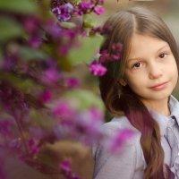 весна :: Ксения Овчинникова