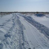 Зимняя дорога. :: Владимир Сквирский