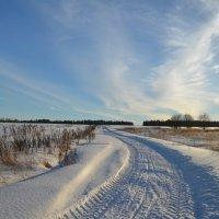 Зимняя дорога :: demyanikita