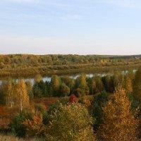 Осенний этюд. :: monter-52 monter-52