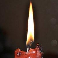 Новогоднее пламя :: Анастасия Гаврилова