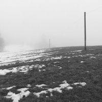 Туманные дни в конце февраля (3) :: Юрий Бондер