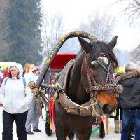 Масленица 2015 :: Александр