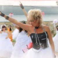 Парад невест :: Валерий Лазарев