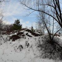 Коломенский пейзаж. :: Oleg4618 Шутченко