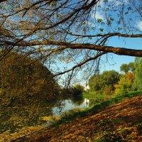 Осень в парке :: Борис Зверков
