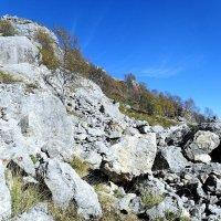 Среди камней :: Сергей Анатольевич