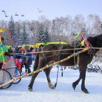 Масленица ....катание на лошадке . :: Мила Бовкун