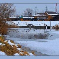 Все стремятся к теплу, птицы тоже... :: Валентина Данилова