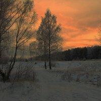 Морозный вечер. :: Андрей Дурапов