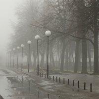 ...фонарная. :: Владимир Гилясев