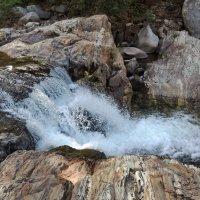 Водопадик в Секвойя парке :: Алексей Меринов