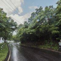 когда на Бали дождь :: Александр