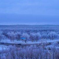 Еще чуть-чуть и весна..... Утро сегодняшнего дня. :: Elena Izotova