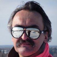 Орел гордый- взгляд стеклянный. :: Александр Борисович Панченко