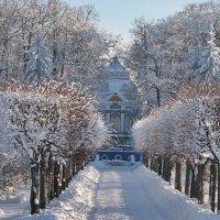 Запомним ЕЕ снежной.... :: Tatiana Markova
