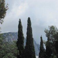 Там, за туманами... :: Юлия Власова