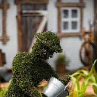 Садовый человечек :: Константин Фролов