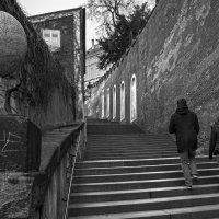 Zámecké schody :: Eugene *