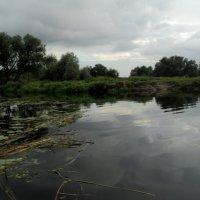 Глубока река... :: Ольга Кривых