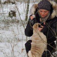 Кое что о зиме :: Александр Александр