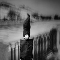 Магия снов. :: Lidija Abeltinja