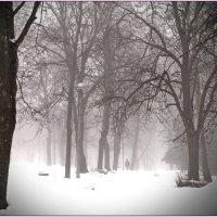 ..туманное(2).. :: Александр Герасенков