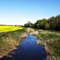 весенний пейзаж... :: Назар