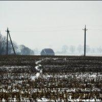 Тропинка белая :: Василий Хорошев