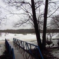 Img_2715 - Первый день Весны-2015 был серый :: Андрей Лукьянов