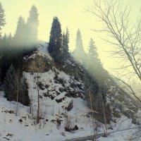 солнце встаёт :: Сергей Савич.