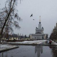 Дождливое утро :: Владимир Иванов