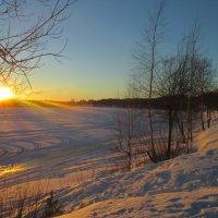 Зима :: Roma Vinogradov