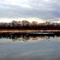 Река Сож в Гомеле. Конец февраля 2015  - панорама :: yuri Zaitsev